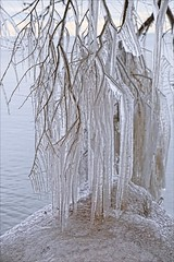 Mother Natures Decorations (Sue90ca Flic*kr Is Finicky, Unable To Comment) Tags: canon 6d erieau ice lakeerie
