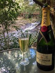 2018-03-22 Springbrook-1843 (Life is so Short) Tags: celebrations mouseshouseretreat springbrook queensland australia au