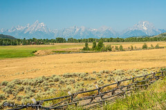 Grand Teton National Park | Wyoming (M.J. Scanlon) Tags: canon capture digital eos landscape mjscanlon mjscanlonphotography mojo outdoor outdoors photo photograph photographer photography picture scanlon sky super tetonnationalforest tree west wildwest wow wyoming ©mjscanlon ©mjscanlonphotography grandtetonnationalpark tetons