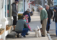 Rockport MA (pag2525) Tags: rockport massachusetts ma mass winter new england people dogs greeting smiling downtown store dog family happy