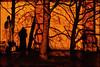 Kiliansplatz bei Nacht (Armin Fuchs) Tags: arminfuchs würzburg dom neumünster kiliansplatz stkilian night shadows light tree church niftyfifty