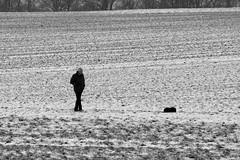 A Man and his Dog. (Greyframe) Tags: greyframe frozen winter snow white black germany walk schwarzweiss blackandwhite monochrome blackwhite grey bw blwh schwarz weiss schwarzweis tree schnee weg landschaft landscape spaziergang hike gehen country land farm weis nebel acker landschaftsaufnahme deutschland dog man
