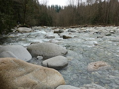 Lynn Creek (D70) Tags: lynn canyon park is municipal district north vancouver british columbia creek rocks rapids mountain stream sony dscrx100m5 ƒ56 88mm 180 125