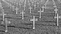 war cemetary (poludziber1) Tags: serbia srbija