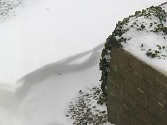 Snow Corner - Original (basswulf) Tags: ipadpro unmodified 43 image:ratio=43 permissions:licence=c 20180302 201803 4032x3024 snow wall corner devon england uk