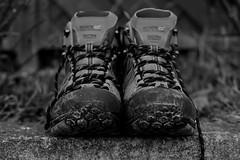 P52 Week 10 | Two Subjects (Steph*Powell) Tags: walking hiking boots monochrome blackandwhite nikond5100 35mm