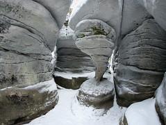 Błędne Skały zimą (Olgierd Pstrykotwórca) Tags: górystołowe błędneskały góry mountains zima snow śnieg