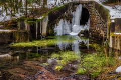 reflection (derbaum) Tags: 2018 derbaum eis erzgebirge nikond5100 tiefenbachwasserfall weicheswasser winter germany märz