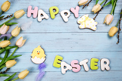 Frame of Sweets for celebrate Easter. Gingerbread in shape of easter bunny, chicken, colorful eggs and tulips (lyule4ik) Tags: easter background celebration decoration decorative egg food holiday season spring tradition wood wooden happy cookies concept design natural rustic springtime texture traditional banner biscuits card celebrate closeup eggs filter flower wishes toned sprinkles white colored letter brown nest frosting bright homemade basket horizontal april shortcrust text sweet chicken nobody bakery