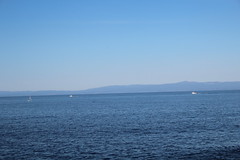 IMG_7671 (mudsharkalex) Tags: california pacificgrove pacificgroveca