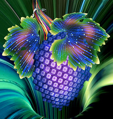 Cybernetic grape (jaci XIII) Tags: uva folha fruta fantasia surrealismo internet computação grape leaf fruit fantasy surrealism computing
