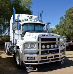Mack V8 Valueliner (quarterdeck888) Tags: trucks transport semi class8 overtheroad lorry heavyhaulage cartage haulage bigrig jerilderietrucks jerilderietruckphotos nikon d7100 frosty flickr quarterdeck quarterdeckphotos roadtransport highwaytrucks australiantransport australiantrucks aussietrucks heavyvehicle express expressfreight logistics freightmanagement outbacktrucks truckies mack macktrucks macktrucksaustralia australianmacks mackmuster kyabrammackmuster2018 truckshow truckdisplay oldtrucks oldmacks v8valueliner