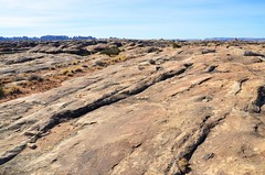 Slickrock Trail (Joe Shlabotnik) Tags: utah 2017 canyonlandsnationalpark november2017 canyonlands nationalpark afsdxvrzoomnikkor18105mmf3556ged