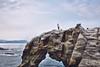 象鼻岩 (M.K. Design) Tags: taiwan yilan nature landscape seascape scenery travel life nikon d800e sunrise rock ocean sea golden nationalpark family elephant tele bokeh ultrawide afs1424mm28g 105mmf14e hdr 台灣 宜蘭 基隆 瑞芳 永鎮海濱公園 日出 自然 風景 象鼻岩 陽光 火燒雲 岩石 尼康 高動態範圍 海洋 海灘 浪 東北角 海岸 金黃 公園 旅行 生活 家庭 親子 淺景深 壓縮 散景 超廣角