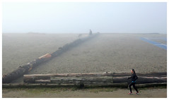 Foggy Beach (HereInVancouver) Tags: fog beach ocean water pacific englishbay logs sand people dog vancouverswestend vancouver bc canada canong3x city urban thingstodobythewater