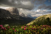 THE BALCONY (Stephen Hunt61) Tags: rododendrum tofane alps dolomites mountains landscape landscapes flowers spring trees panorama nature natura clouds valley peaks aberi roccia fiori vallata dolomiti primavera stefanocaccia