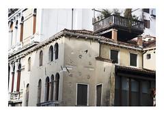 _JP28148 (Jordane Prestrot) Tags: jordaneprestrot venise venice venezia ⛎ pigeon paloma zodiaque zodiac zodíaco architecture arquitectura
