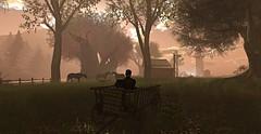 sᴏᴍᴇᴛɪᴍᴇs,ʏᴏᴜ ᴊᴜsᴛ ɴᴇᴇᴅ ᴀ ʙʀᴇᴀᴋ. ɪɴ ᴀ ʙᴇᴀᴜᴛɪғᴜʟ ᴘʟᴀᴄᴇ. ᴀʟᴏɴᴇ. ᴛᴏ ғɪɢᴜʀᴇ ᴇᴠᴇʀʏᴛʜɪɴɢ ᴏᴜᴛ. 👤 (Addixxion) Tags: secondlife beautiful place alone