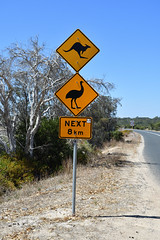 Watch out! (philk_56) Tags: western australia warning sign kangaroo emu road lake preston causeway