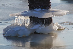 On a frosty day (Steenjep) Tags: vinter winter jylland danmark denmark water vand fjord is ice hjarbækfjord virksund havn harbour port sea frost frosen musling