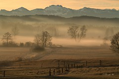 Sunrise in the Bavarian Alps! (Renata1109) Tags: nebel berg gras feld weide baum bäume himmel landschaft wald sonnenaufgang sunrise landscape tree wood outdoor fog mountain sky berge aussichten bruck bayern bavaria deutschland germany voralpenland oberbayern