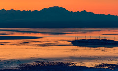 Cook Inlet colors (Traylor Photography) Tags: alaska glennalps tide landscape sunset nature turnagainarmsunset fireisland hillside mountain flattop colors cookinlet anchorage