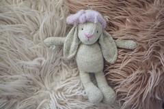 Bunny ({amanda}) Tags: handknit knitting knitted cute knits knittedbunny toys