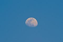 Daylight Moon (Filipe Sizilio) Tags: sun atmosphere flare stratosphere sundog evening dramatic sky dusk beautiful sunlight blue moon telezoom eos 300mm canon day