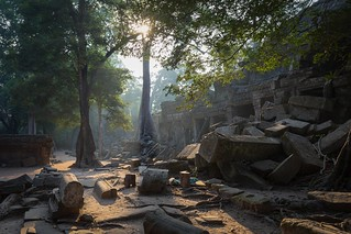 Ta Prohm early in the morning