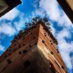 Torre Guinigi thumbnail