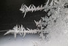 DSC_7799 (harynjk23) Tags: frostwork winter freez jégvirág tél macro nikon d5300 extension tubes
