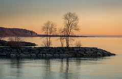 Sunrise over Lake Ontario (Phil Marion) Tags: frozen philmarion candid woman girl boy teen 裸 schlampe 나체상 벌거 desnudo chubby nackt nu ヌード nudo khỏa 性感的 malibog セクシー 婚禮 hijab telanjang nubile nude slim plump tranny sex slut nipples ass boobs tits upskirt naked sexy bondage fuck tattoo fetish erotic feet cameltoe cock winterstations oriental asian latina japanese african khoathân beach public swinger cosplay gay wife milf dick crossdress pussy panties ladyboy babe