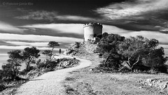 El Décimo Reino. / The 10th Kingdom. (Recesvintus) Tags: villajoyosa alicante spain españa torredemalladeta landscape paisaje blackandwhite monochrome blancoynegro outdoors airelibre timeless intemporal cuentodehadas fairytale sky clouds trees path road meandering winding serpenteante sinuoso camino fantasy fantasía malladetatower tower torre recesvintus wbpa amoralarte