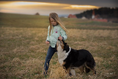 Evening walk (markus_langlotz) Tags: dog dogs hund hunde kind child girl mädchen sonnenuntergang sunset goldenhour goldenestunde
