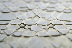 Detail (De Rode Olifant) Tags: detail marjansmeijsters origami paper paperfolding butterflymolecule tessellationbit6 hexagon triangle