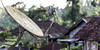 No matter where you go (A Different Perspective) Tags: bali bedugal villageabovetheclouds cobweb dish moss receiver roof satellite web