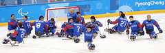 Paralympic_IceHockey_Korea_Italy_18 (KOREA.NET - Official page of the Republic of Korea) Tags: 평창 2018평창동계패럴림픽 강릉시 강릉하키센터 강릉올림픽파크 파라아이스하키 아이스하키 2018pyeongchangwinterparalympic paralympics icehockey gangneunghockeycenter bronzemedalgame