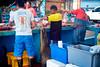 20180301090139Galapagos 1 (ticktockdoc) Tags: fishmarket equador galapagos santacruz sealion animals