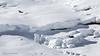 Belles rencontres (AnneLise Pollet) Tags: neige montagne blanc chamois renard valloire savoie maurienne alpes paysage hiver chamoisdesalpes rupicaprarupicapra