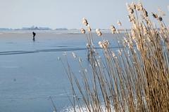 Schaatsen bij Oudega. (parnas) Tags: schaatsen oudega friesland nederland winter ijs