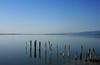 Salton Sea, California (Legobird3) Tags: california saltonsea