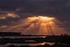 attimi di luce (mat56.) Tags: tramonto sunset raggi sole sun luce light fenicotteri nuvole nubi clouds cielo sky stagno santagiusta oristano sardegna pond antonio romei mat56 paesaggi paesaggio landscapes landscape rays flamingos uccelli birds panorama