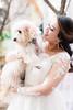 Puppy-Bride (Irving Photography | irvingphotographydenver.com) Tags: wedding photographer denver colorado