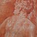 PRIMATICE - Rébecca donne à Boire à Eliézer (drawing, dessin, disegno-Louvre INV8511) - Detail 76