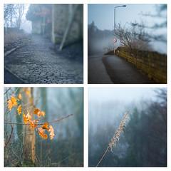 365-2018-070 (Father Pie) Tags: lensbaby blur edge50 elland goghill mist fog