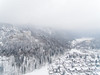 Neuschwanstein Castle (mattkubler) Tags: drone arial phantom
