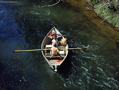River Boat - Washington State (Electric Crayon) Tags: riverboat family dog pacificnorthwest washingtonstate graysharborcounty usa unitedstates america rural 35mm film minolta kodak electriccrayon patrickmcmanus