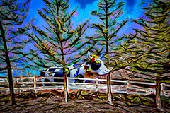 Scenic Cow (Rusty Russ) Tags: cow fence tree rural scenic moo west newbury colorful day digital window flickr country bright happy colour eos america world sunset beach water sky red nature blue white green art light sun cloud park landscape summer city yellow people old new photoshop google bing yahoo stumbleupon getty national geographic creative composite manipulation hue pinterest blog twitter comons wiki pixel artistic topaz filter on1 sunshine image reddit