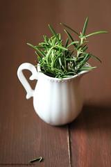 Rosmarino per le lenticchie (Giovanna-la cuoca eclettica) Tags: stilllife erbearomatiche green varie food cibo