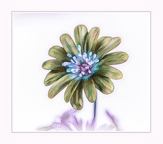 Batik flower (Krasne oci) Tags: flowerart flowers spring texturedphoto digitalart painterly soft evabartos photographicart artphotography photoart macro